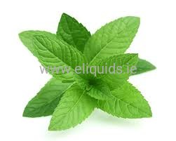 Feel aroma of Peppermint For E Liqiud 10ml