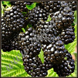 E Liquid 30ml Dekang Blackberry